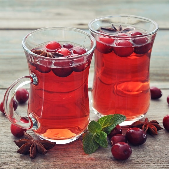 slow cooker hot and spicy cranberry punch recipe